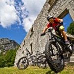 E-Bike Mountainbike Testbericht Radlager Bikefex Herwig Kamnig (2)